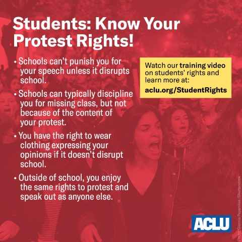 Graphic of Know Your Rights Information for Student Protesters